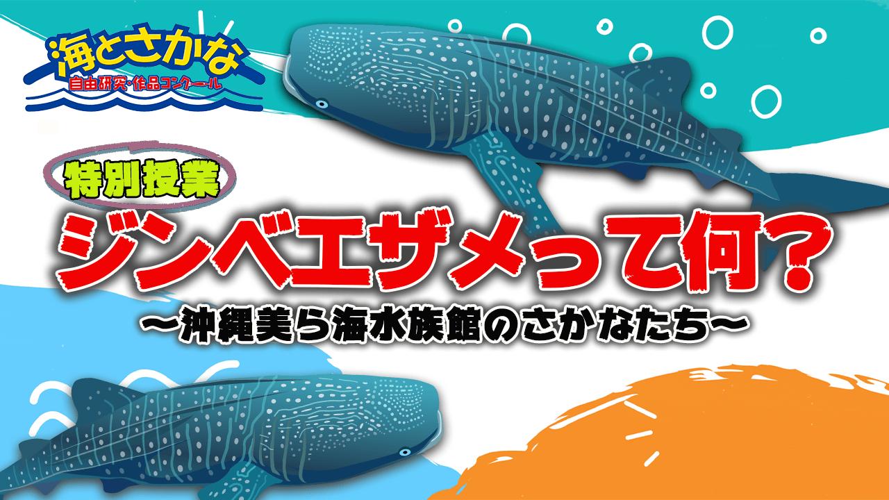 特別授業『沖縄美ら海水族館のさかなたち』<br>〜ジンベエザメ編〜公開中!