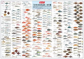 抽選『日本水産魚譜307選』ポスタープレゼント!